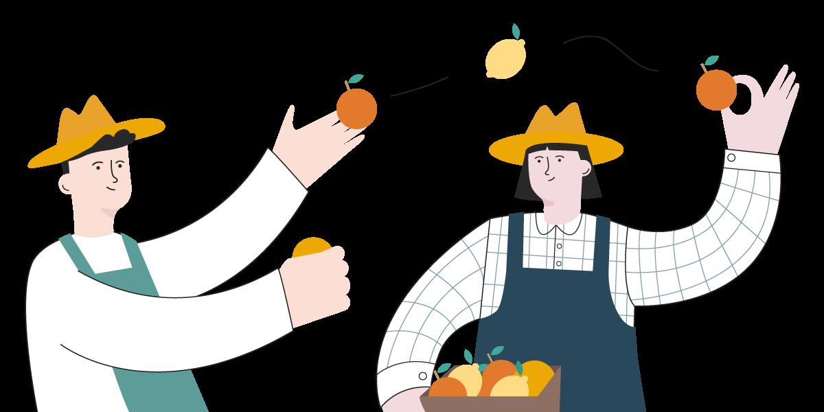 Commande des oranges d'autres agriculteurs